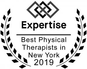 2019-expertise-online-award-best-pt-nyc
